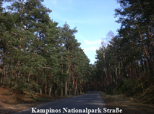 Kampinos Nationalpark Strasse