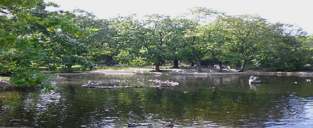 PaKrasinski Park