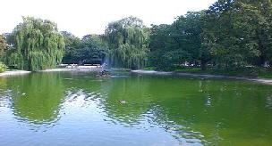 See Sächsischer Garten